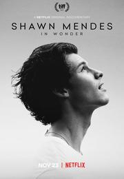 숀 멘데즈 스토리 Shawn Mendes: Wonder