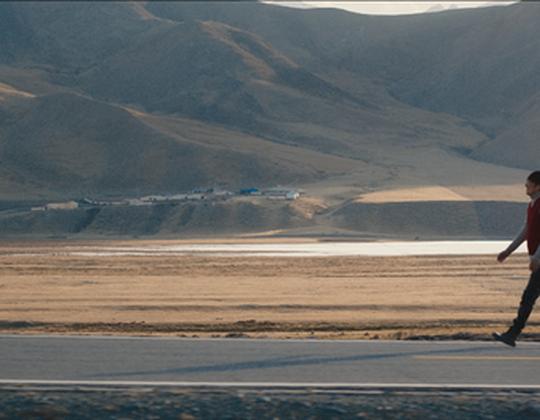 影片《牛王》10月18日溫暖公映 蒙古族少女千里奪牛開啟治好之旅